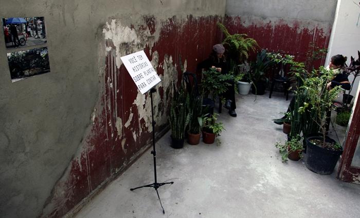 Historias de um jardim imaginario_montagem no Jardinalidades Casa do Povo_72dpi